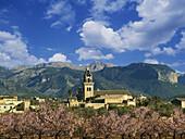 Santa Maria del Cami, background Tramuntana Mountains, Majorca, Balearic Islands, Spain