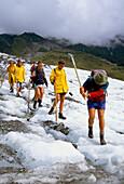 Walking on Fox Glacier, Fox Glacier, South Island, New Zealand