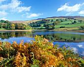 Landscape (Late Summer), Ladybower Reservoir & Derwent Edge, Derbyshire, UK, England
