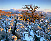 Landscape from Twistleton Scars (winter), Ingleborough, Yorkshire, UK, England