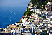 Village on shore in the sunlight, Capri, Italy, Europe