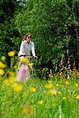 Female cyclist riding through sea of flowers, Bavarian Forest National Park, Lower Bavaria, Bavaria, Germany