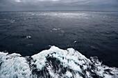 Waves, cruise liner, Queen Mary 2, Atlantic ocean