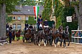 Outdoor photo, Stallion Parade, State Stud, Warendorf, Münsterland, North Rhine-Westphalia, Germany, Europe