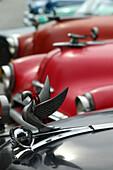 Old American cars with swan emblem detail, Havana, Cuba, Caribbean