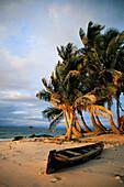 Beach scene in early morning light, San Blas Islands, Panama