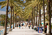 View along busy palm-lined Promenade Avenida Duque de Ahumada, Marbella, Costa del Sol, Spain