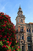 Architecture and flowers in bloom, Seville, Andalucia, Spain