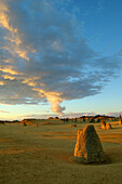 Pinnacles Desert, rock formations in warm sun, Cervantes, Western Australia, Australia