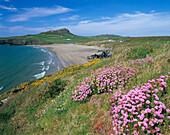 Beach scene, Whitesands Bay, Pembrokeshire, UK, Wales