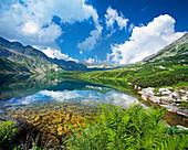 The Great Pond in Five Ponds Valley, Tatra Mountains, Zakopane, Poland