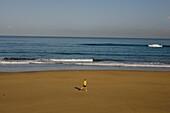 Lonesome jogger on the beach, Playa de las Canteras, Las Palmas de Gran Canaria, Gran Canaria, Canary Islands, Spain, Europe
