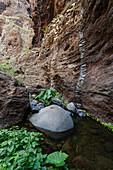 Aboriginal site at a brook, Masca canyon, Barranco de Masca, Parque rural de Teno, Tenerife, Canary Islands, Spain, Europe