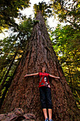 women posing uder 800 year old giant redwood Trees in Cathedral Grove National Park on Vancouver Island, Canada, North America