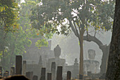 Buddha statues in the morning haze, Kamphaeng Phet, Wat Phra Khaeo, Central Thailand, Asia