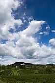 Abbazia di Rosazzo, Friaul-Julisch Venetien, Italien
