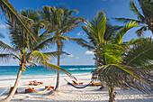 Beach of the Om Tulum Resort in Tulum, State of Quintana Roo, Peninsula Yucatan, Mexico