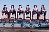 Container ship at container gantry crane, Port of Hamburg, Germany