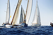 Ancient, Balearic, Balearic Islands, Barco, Barcos, Boat, Boat race, Boat races, Boats, Bow, Cabos, Calm, Calmness, Chill out, Chilling out, Classic, Color, Colour, Compete, Competición, Competing, Competition, Competitions, Contemporary, Day, Daytime, De
