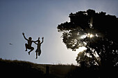 Boy, Boys, Color, Colour, Contemporary, Cool, Countryside, Jump, Jumping, Leap, Leaping, Light, Maunganui, New Zealand, North island, Ray, Rays, Silhouette, Sun, Sunlight, Teen, Teenager, Teenages, Tree, Two, F57-872478, agefotostock