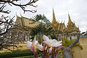 Blüten und Pflanzen vor dem Königspalast, Phnom Penh, Kambodscha, Asien