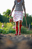 Mature woman in a vegetable garden, Lower Saxony, Germany