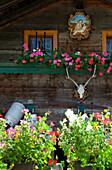 Close-up of an alpine hut, Garberl Alm, Eng, Karwendel, Tyrol, Austria