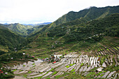 View at the rice terraces of Batad, Eight Wonder of the World, Banaue, Luzon, Philippines, Asia