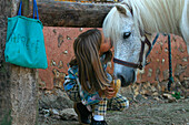 A Kiss For The Pony, Montigny-Sur-Avre Horse Farm, Eure-Et-Loir (28), France