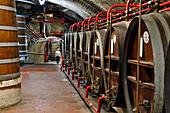 Ageing Of The Liqueur In Oak Barrels, Benedictine Palace, Fecamp, Seine-Maritime (76), Normandy, France