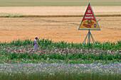 The Fields Of The Beauce, Louville-La-Chenard, The Wheat Route, Eure-Et-Loir (28), France