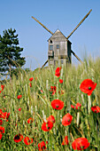 Windmill (Ymonville) Near A Wheat Field And Poppies, Eure-Et-Loir (28), France