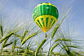 Hot-Air Balloon Of The Departmental Council Of Eure-Et-Loir Flying Over A Wheat Field, Eure-Et-Loir (28), France