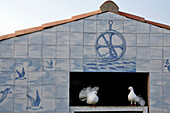 Dovecote Of Azulejos, Blanc Marine, Bed Breakfast 'Clevacances' And 'Gites De France', Noirmoutier, Vendee (85), France