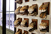Horse'S Jaws, Fragonard Museum, National Veterinary School Of Alfort, Maisons-Alfort, Val-De-Marne (94), France