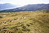 Mountain bike rally near Flims, Canton of Grisons, Switzerland