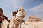 Saqqara Step Pyramid of Pharaoh Djoser, Egypt, Saqqara