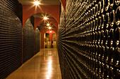 Bodegues Macia Batle Winery Cellar, Santa Maria del Cami, Mallorca, Balearic Islands, Spain, Europe