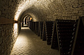 sekt bottles, shelf storage, in cellar, Schloss Landestrost, Neustadt am Rübenberge, Lower Saxony, Germany