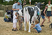 an artificial cow, Milk fair at Hemme Hof, kids, educational, dairy farm, in Sprockdorf in the Wedemark, Lower Saxony, northern Germany