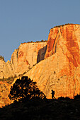 Towers of the Virgin, Zion National Park, Utah, USA