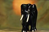 Nahaufnahme von einem geschnitzten Elefant, Holzelefant, Still-life