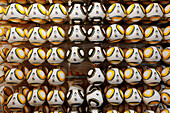 Display of footballs in a sports shop, one missing, FIFA World Cup, Capetown, Western Cape, RSA, South Africa, Africa