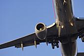 Aeroplane approaching landing Toronto,  Ontario,  Canada