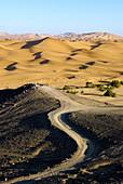 Desert dunes in Morocco,  Africa.