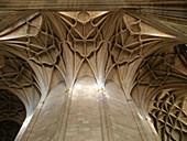 Nervaduras. Catedral de Segovia. Castilla y León. España.