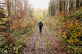 Adult, Adults, Autumn, Back, Backpack, Body, Color, Colour, Contemporary, Daytime, Equipment, Europe, Exterior, Fallen, Forest, Forests, Full, Full-body, Full-length, Gear, Hike, Hiker, Hikers, Hiking, Human, Irati, Leaves, Leisure, Length, Man, Navarra,