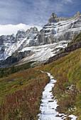 Fresh autumn snow on the Ptarmigan Wall above the Iceberg Lake Trail,  Glacier National Park Montana USA