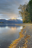Fallen leaves on the shore of Lake McDonald,  Mounts Stanton and Vaught in the distance glow in the evening light,  Glacier National park Montana USA