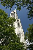 Woolworth building (1913),  Seaport area,  Manhattan,  New York,  USA,  2008